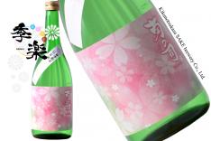 kikunotsukasa_sakura
