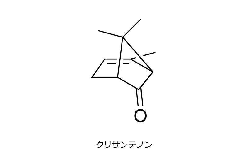 片岡201809