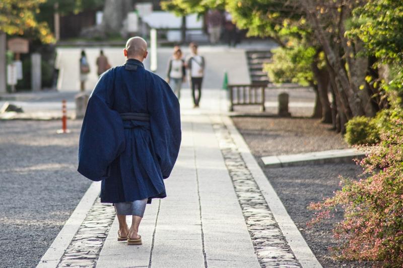 菩提酛から学ぶ!酒造りにおける乳酸発酵の重要性